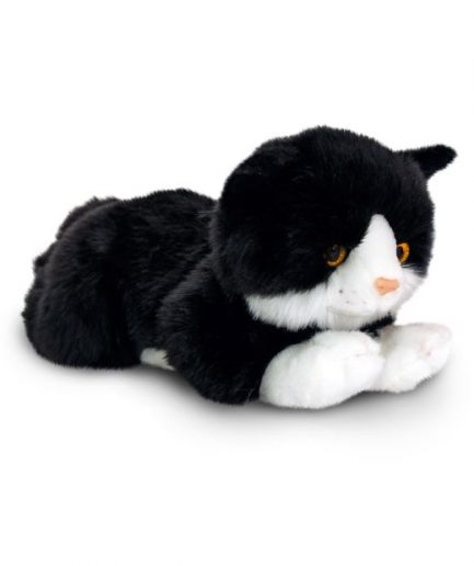 Keel Kittens