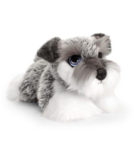 Keel Puppies